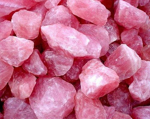 salt-home